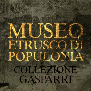 MUSEO POPULONIA